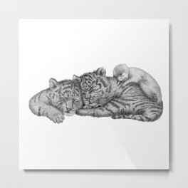 Tiger Naps Metal Print