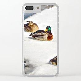 3 Mallards Clear iPhone Case