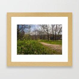 Troubled summer woods Framed Art Print