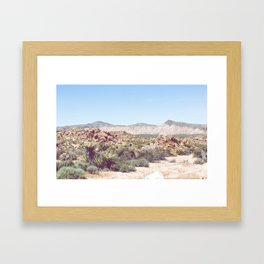 Joshua Tree, No. 2 Framed Art Print