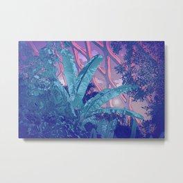 Celestial Greenhouse Metal Print