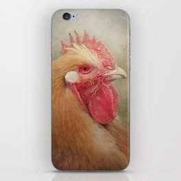 The Wise old Hen iPhone Skin