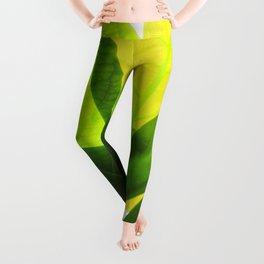Avocado Leaves Leggings