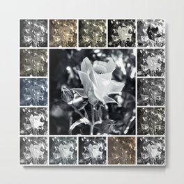 Black and White Rose Collage Metal Print