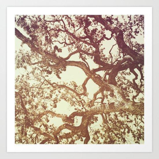 WOODEN WALLPAPER Art Print