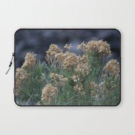 Dried Wildflowers at Bridal Falls Utah Laptop Sleeve