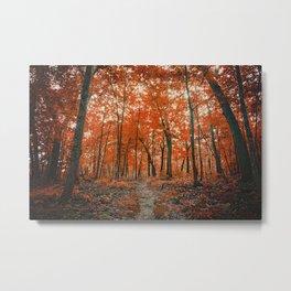 La Foresta Rossa Metal Print