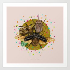 Insect Universe Art Print