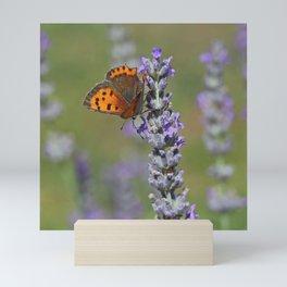 Small Copper Butterfly Mini Art Print