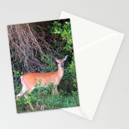 Can I Help You Stationery Cards