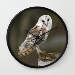 Barn Owl Wall Clock