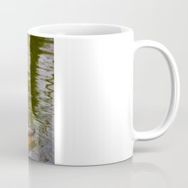 Swimming ducks Coffee Mug