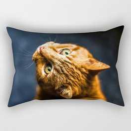 Ginger kitty cat Rectangular Pillow
