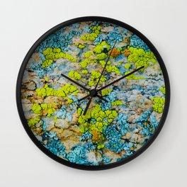 Hyper Lichen on Warm Desert Rock Wall Clock