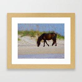Shack Pony Framed Art Print