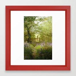 bluebell meadows Framed Art Print