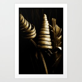 Corn swirls Art Print