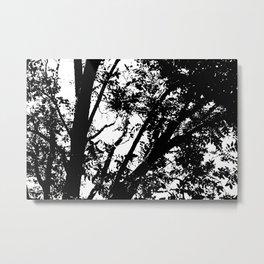 Pecan Tree Silhouette Metal Print