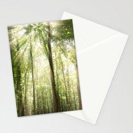 Sun Rays Through Treetops Inspirational Landscape Photo Stationery Cards