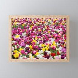 Tulip Field Framed Mini Art Print