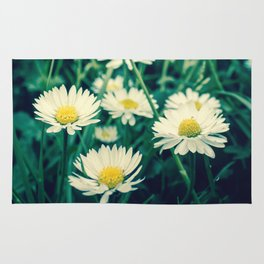 Spring Blooming White Daisies and Lady Bird Johnson Quote Rug