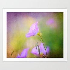 Springly Art Print