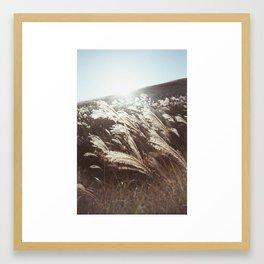 EULALIA SUNSET (2017) Framed Art Print