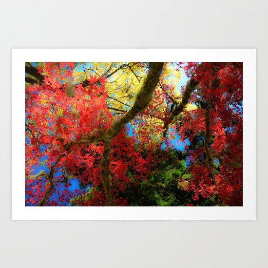 Fall Colors at Crescent Lake Lodge, 2 Art Print