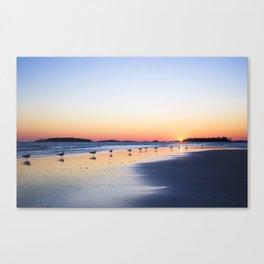 "All My ""Ducks"" In A Row Canvas Print"