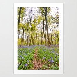 bluebell blanket Art Print