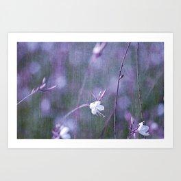 melancholy flowers Art Print