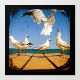 Seagulls - Number 2 from set of 4 Canvas Print