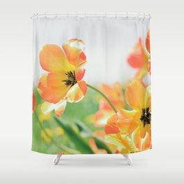 Bright Orange Tulips in Sunlight Shower Curtain