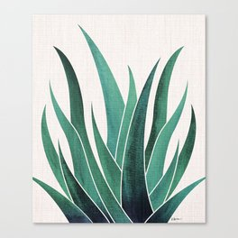 Desert Agave Canvas Print