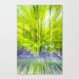 Rushing through thebluebells Canvas Print