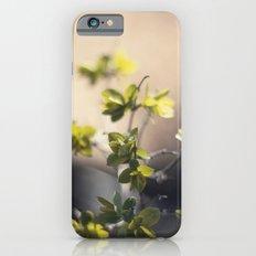 UNTITLED MACRO 01 Slim Case iPhone 6s