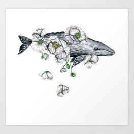 Whale & White Poppies Art Print