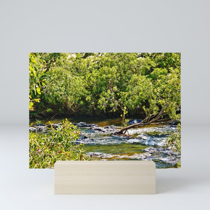Beautiful river running over rocks Mini Art Print