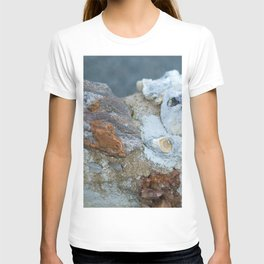 Stones together T-shirt