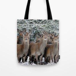 Herd Of Deer Tote Bag