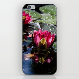 Two water lilies in the sunbeam iPhone Skin