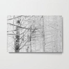 x-ray branch Metal Print