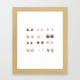Boobies. Framed Art Print