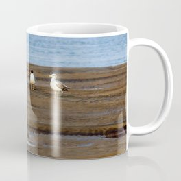 Drill Sergeant Seagull Coffee Mug