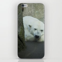 Missing the North iPhone Skin