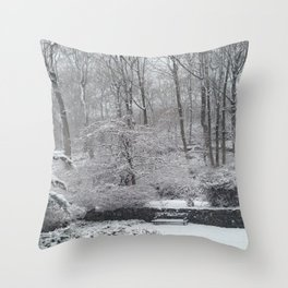 Maplewood - South Mountain Reservation - Snow Throw Pillow