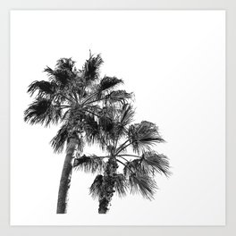 B&W Palm Tree Print | Black and White Summer Sky Beach Surfing Photography Art Art Print