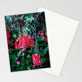Carmine Callistemon Stationery Cards