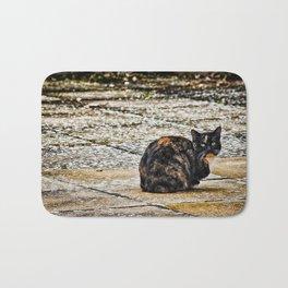 Tortoiseshell Cat Bath Mat