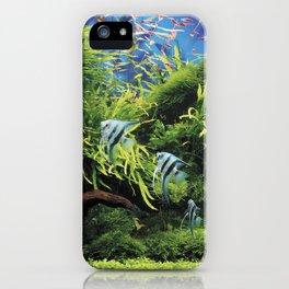 Freshwater Angelfish aquarium iPhone Case
